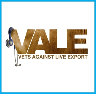 VALE Blue_Vocal Animal image template